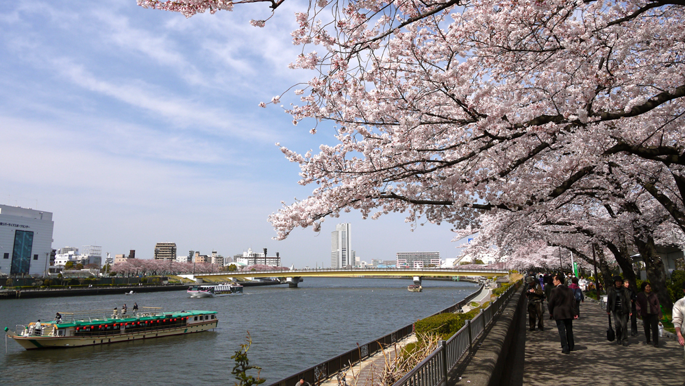 sumida by Yoshikazu Takada cropped