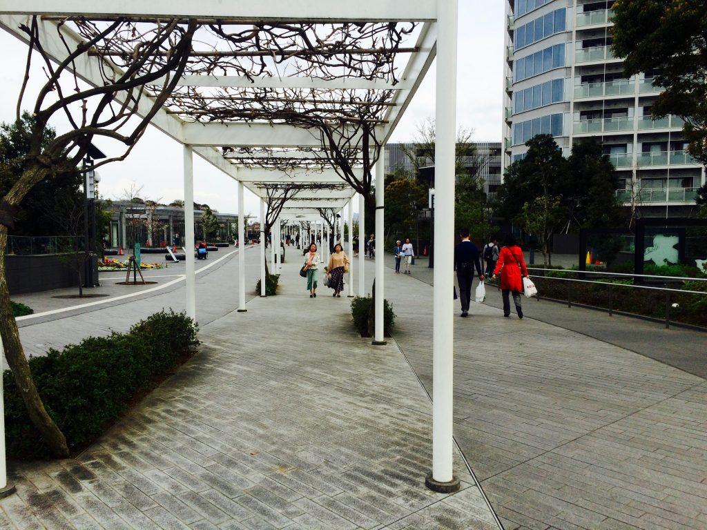 pathway-to-playground-and-garden